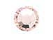 1440  Vintage Rose - 2028 Swarovski SS10 Hotfix Flat Backs