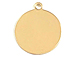 10mm Round Gold-Filled Disc Charm