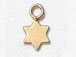Gold-Filled Star Charm