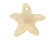 Silk - 20mm Swarovski Starfish Pendant