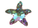 Crystal Vitrail Light - 20mm Swarovski  Starfish Pendant with custom coating ( coating may be slightly different than shown)